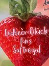 """""""Erdbeer-Glück"""" – druckpartner Druck- und Medienhaus GmbH"""